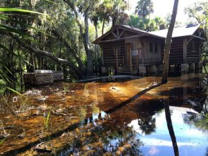 DEC Contracting Group rescued this dilapidated cabin at Myakka State Park.